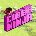 Ninja Cubo