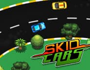 Carros Skid