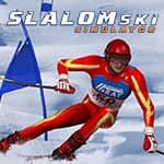 Slalom Simulador de Ski